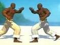 Tauche ein, in die Künste des Capoeira und kämpfe gegen einen Freund am gleichen Computer. Klicke au