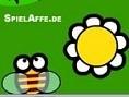 Blumenbiene Die fleißige Biene fliegt über die Wiese und sucht nach Blumen. Doch Vorsicht, auf der W
