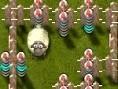 Koyunlari kurtar