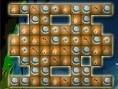 Aqua Dünyası