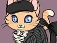 Katze anziehen