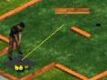 Steuerung: Maus Platziere den Ball durch Klicken an einer bestimmten Stelle. Bewege anschließend die