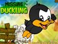 Missing Duckling