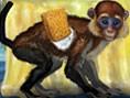 Mein lustiger Affe