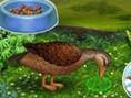 Glückliche Ente