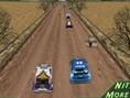 3D Rally Fieber