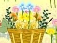 Curi Flower Design