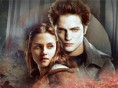 Twilight Puzle
