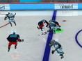 Eishockey- Profis
