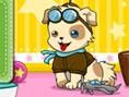 Mutlu ve Sevimli Köpek Oyunu Hayvanlar Kedi Köpek Kuaför Oyunlar? Merhaba k?zlar! Siz