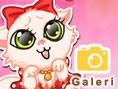 Tatl? Kedicik Oyunu Kedi Oyunlar? Yeni bir resim galerisi oyunu ile kar??n?zday?m. Bu sevimli kediyi