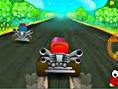 Hızlı Karting Yarışları