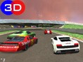 Speed-Rally Pro