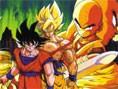 Dragon Ball Sert Dövüş