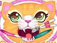 Neue Mädchenspiele Gratis Precious Kitty Dentist - In diesem Mädchenspiel seid ihr mit einer süßen K