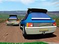 Rallye-Weltmeister-schaft