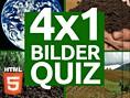4x1 Bilder-Quiz