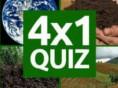Bei diesem neuen Quiz ist die Aufgabe klar: 4 Bilder verweisen auf 1 Wort und es muss erraten werden