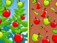 5 Similarities