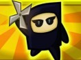 Ninja- Abenteuer