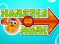 Hamster Eve Doğru
