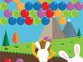Baloncu Tavşan