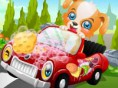 Hunde- Autowäsche
