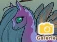 Pony-Fee