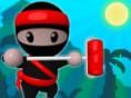 Ninja-Maler - male die richtigen Wände an! Ninja Malerist ein spannendes Denkspiel, in de