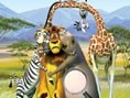 Madagascar Zahlensuche