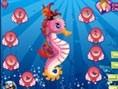 Magic Sea Horse