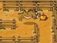 Wildschwein Labyrinth