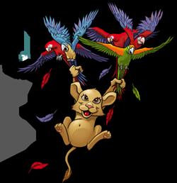 zoomumba online mmo eğlence hayvan oyunu papağan ve kedi